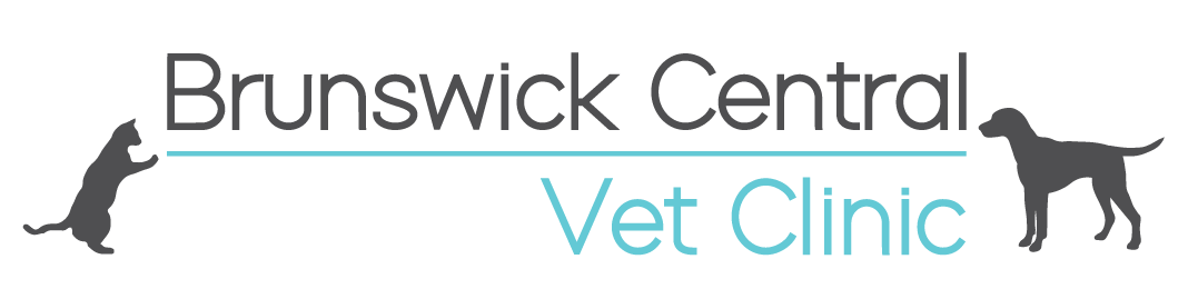 Brunswick Central Vet Clinic VIC logo