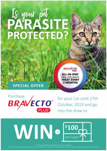 Is your pet parasite protected?